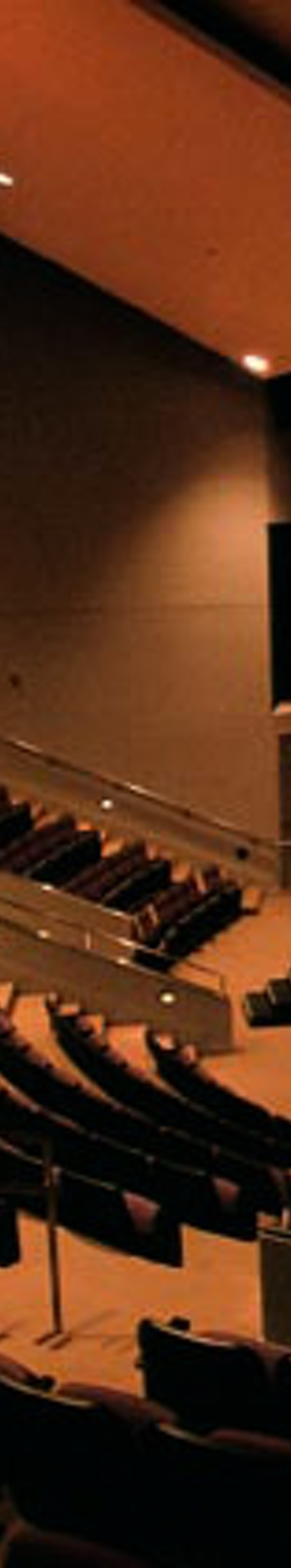 Williams Center For Performing Arts