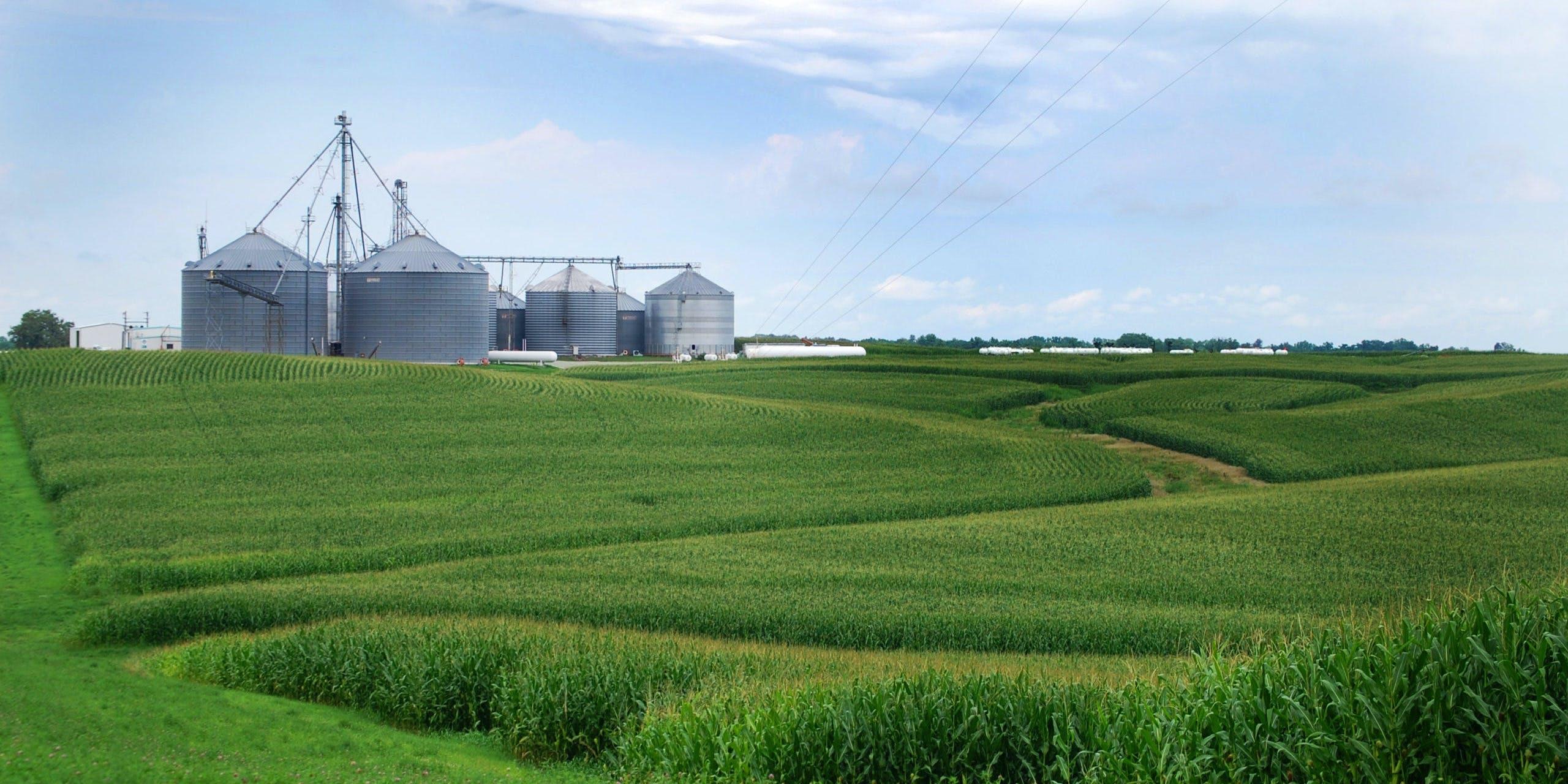 We must not weaken the farm safety net. description