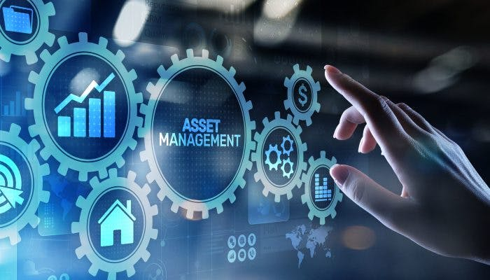 5 Ways You're Missing Out if You Don't Do Asset Management
